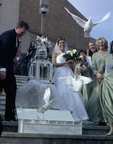 Už sa neviem dočkať - aj svadobné holúbky budú