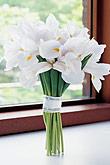 Kvety, kvietky, kvetinky... - Obrázok č. 47