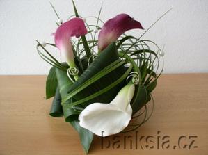 dnes mi byla nabízena v květinářství kytice z kal barvy předchozího a tohoto obrázku-prostřední květ...ta barva přechází aý do takové tmavé....můžu mít tuto květnu k růžové tabuli??