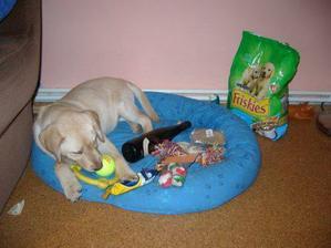 Vánoce 2006 - láhev od vína byla nej hračka