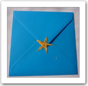 Co už máme a inspirace aneb mořská svatba - obálka na oznámení, akorát bude jiný tvar, tohle je fotomontáž