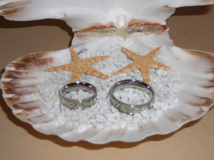 Co už máme a inspirace aneb mořská svatba - Obrázek č. 55