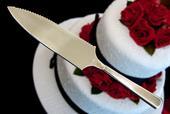 Nerezový nůž na dort 2 v 1,