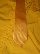 košile (nevyžehlená :) a kravata ženicha