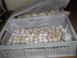 svatební koláčky-5.září