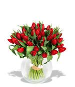 Tulipány miluji, ale je s nima v červnu celkem problém :-(