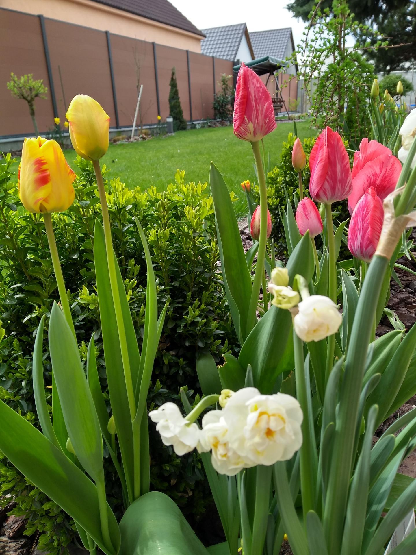 Vonku je lepšie ako vnútri 2021 - Farebná jar