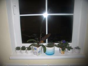 okno v pracovni