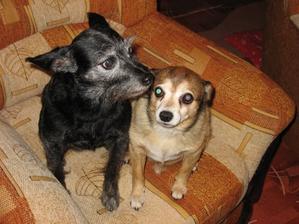 Andík a jeho nejlepší kamarádka Čudlinka-nalezenec, nyní jí bude 18 let, také se mnou vyrůstala.