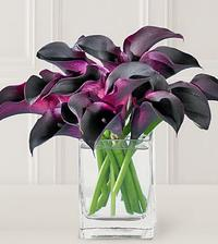 love calla lillies