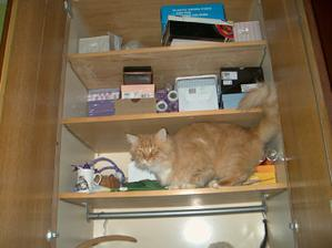 Náš Houmíšek se musel podívat co se schovává do této skříně :-)