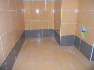 ...dokoncene oblozeni wc a zasparovani sten...