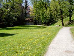 Věřily byste, že taková louka je u Pražského hradu?