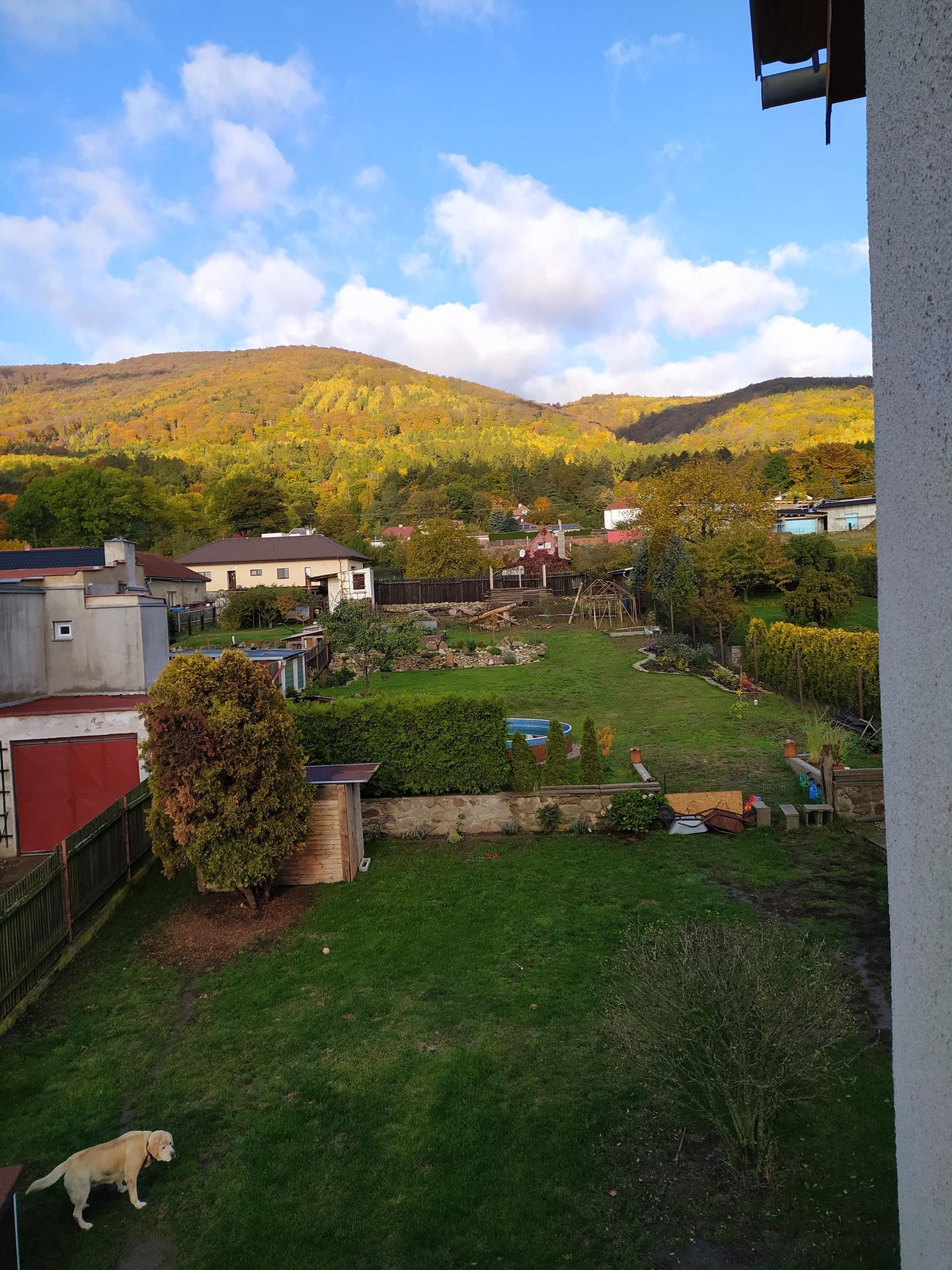 Rekonstrukce 2019 před - Zahrada