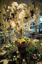 Ten nápad - z mechu vyrůstající květinový strom! A všude kolem svíčky...