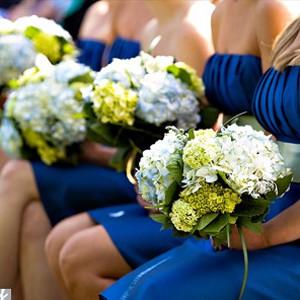 INSPIRACE - Kombinace s modrou (odstíny modré, s bílou, s černou, se zlatou, se zelenou, s hnědou, ...) - S BÍLOU