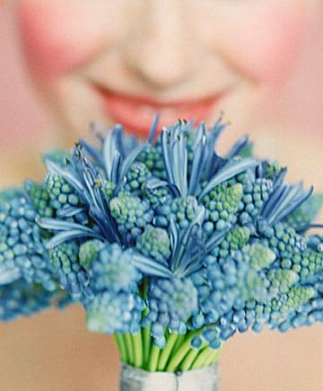 INSPIRACE - Kombinace s modrou (odstíny modré, s bílou, s černou, se zlatou, se zelenou, s hnědou, ...) - Obrázek č. 22