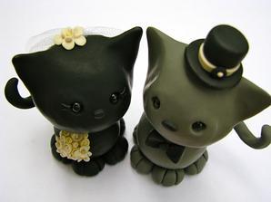 kočka a kocour