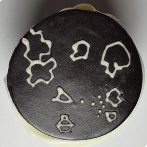 Sladký koutek (zajímavé nápady na cuppycakes, nezvyklé dorty, macarons atd. nejen na svatbu) - Asteroids
