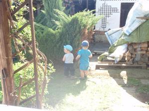 místo pískoviště byl nevzhledný strom :-( a na dvoře bylo plno haraburdí dřeva a různého jiného bordelu