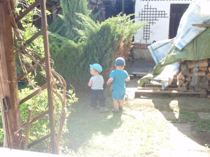 ZAhrada - místo pískoviště byl nevzhledný strom :-( a na dvoře bylo plno haraburdí dřeva a různého jiného bordelu