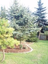 alespoň jedna část zahrady už je téměř podle našich představ :-)