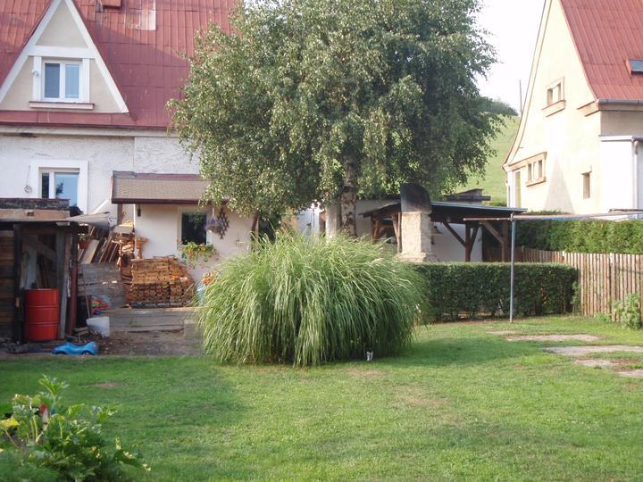 ZAhrada - Pampas je po zbourání boudy přesně v půli zahrady ,takže z jara nás čeká velké přesazování