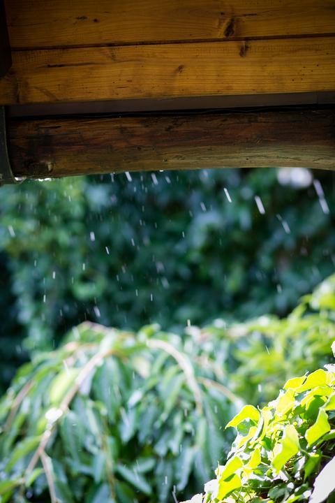 Prší nám štěstí...