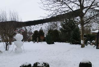 Rano (kde sa vzal, tu sa vzal, na zahrade rano stal....a na hlave) a na strome mačka!