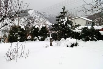 a znovu, nova varka snehu. zima 2013 nema konca kraja.