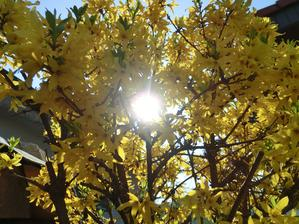 slnko v slnku