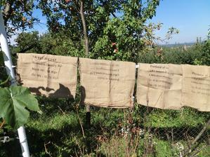 a vrecia od kávy mi pomôžu prezimovat kvetináče na terase (navlečiem ich a vypchám slamou)