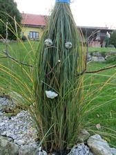môze snezit - travy zviazane