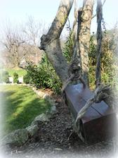 stare lano + kus dreva = hojdacka