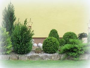 zeleň pri chodníku