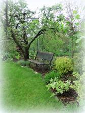 stará a veľmi fotogenická lavička