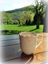 mam rada rannu kavu na zahrade.