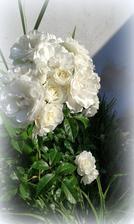 biela ruza a jej krasny kvet