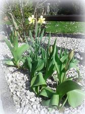 jar so všetkým, čo k nej patrí