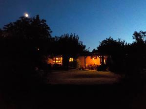 tak som v noci pozorovala padajuce hviezdy. videla som krasne nebeske divadlo, ale fotky sa mi podarili len pozemske :-D