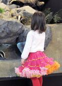 duhová tutu sukně 2- 8 let,
