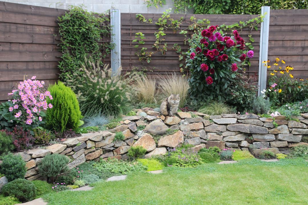 Naši kočičáci - Obrázek č. 28