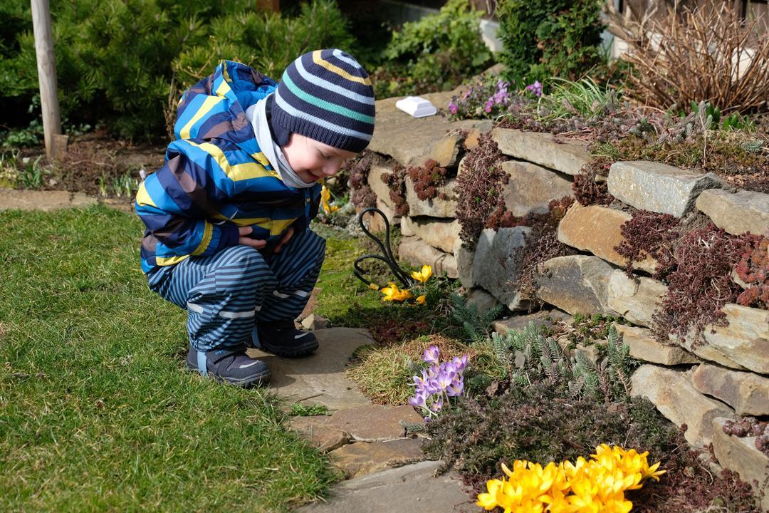 Naša záhradka 2020 - Môj záhradný pomocník