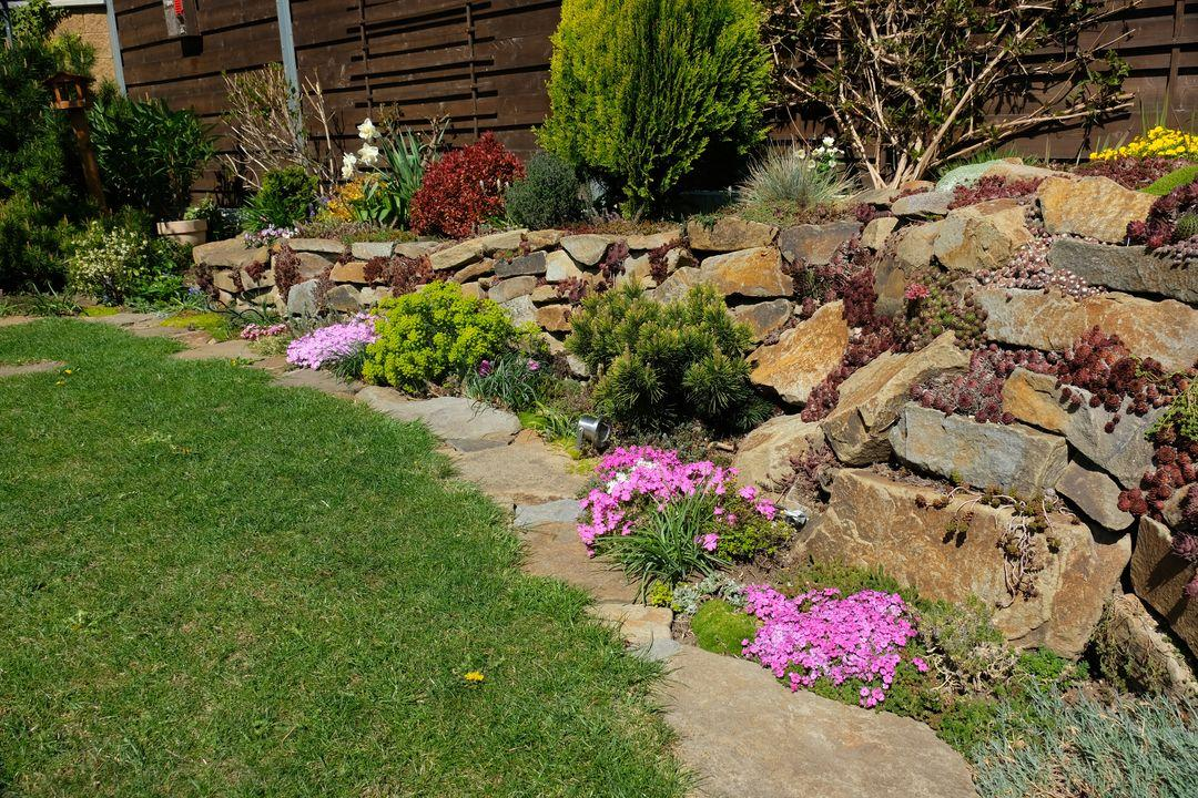 Naša záhradka 2020 - Obrázek č. 32