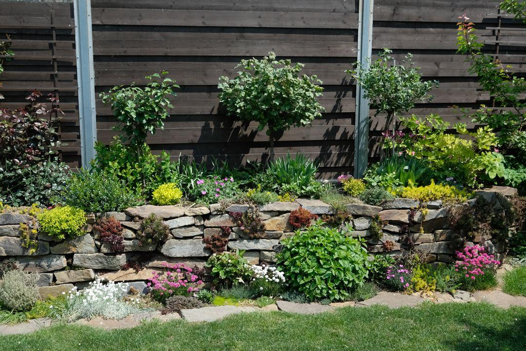 Naša záhradka 2020 - Obrázek č. 42