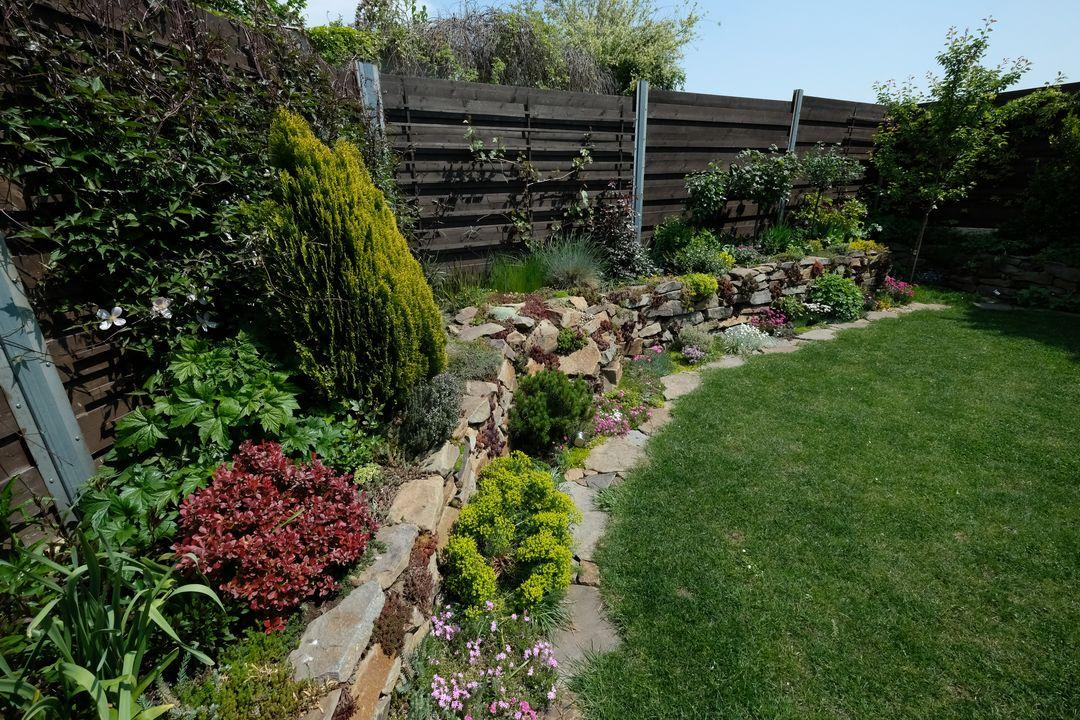 Naša záhradka 2020 - Vzadu na zahrade v maji