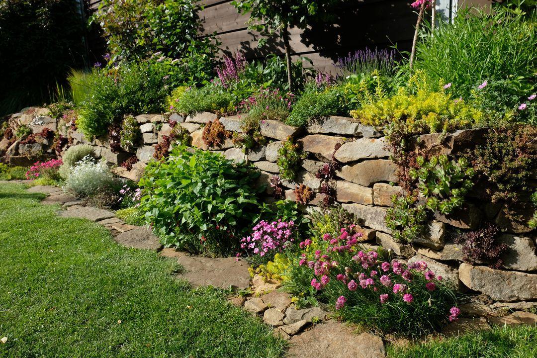Naša záhradka 2020 - Obrázek č. 49