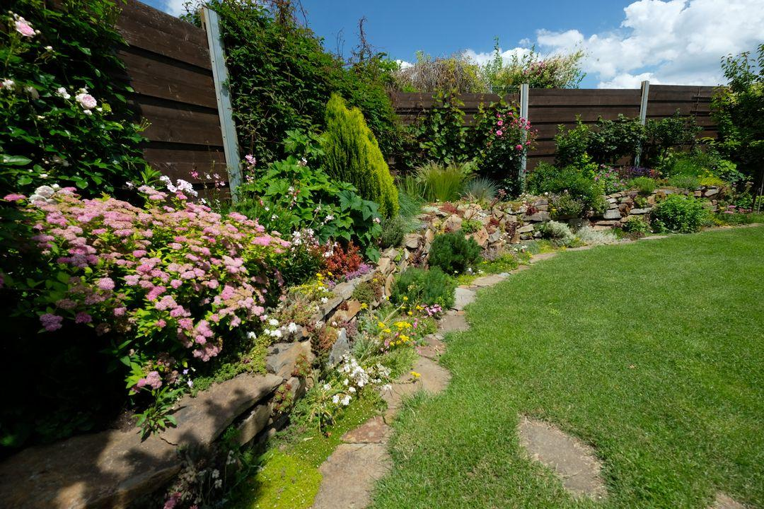 Naša záhradka 2020 - Obrázek č. 54