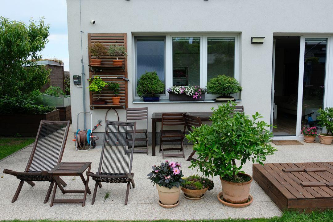 Naša záhradka 2020 - Na terase bonsaje, brachyscome, mandarinka a jirinka.