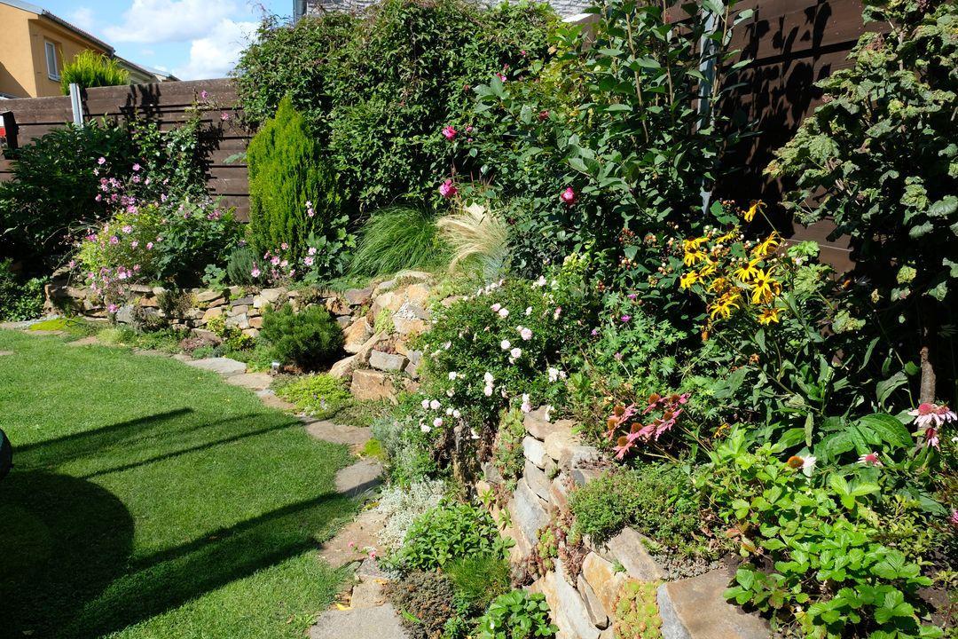 Naša záhradka 2020 - Obrázek č. 80